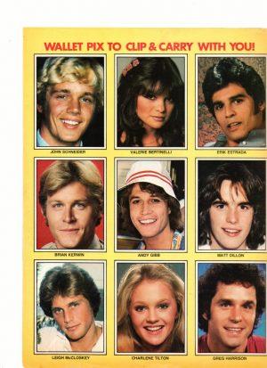 Matt Dillon Valerie Bertinelli Andy Gibb Charlene Tilton Brian Kerwin teen magazine collector cards