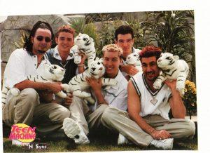 Nsync stuffed tigers zoo