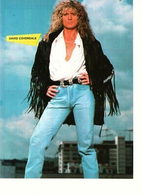 Whitesnake David Coverdale teen magazine pinup clipping jeans Cream