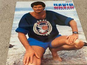 David Hasselhoff barefoot shorts sand beach Baywatch Bravo poster